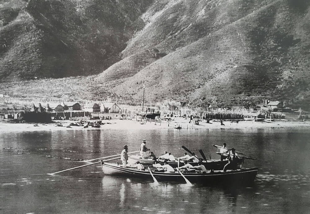 Whale Chasers At Te Awaiti Shared By Maori Eco Cruises